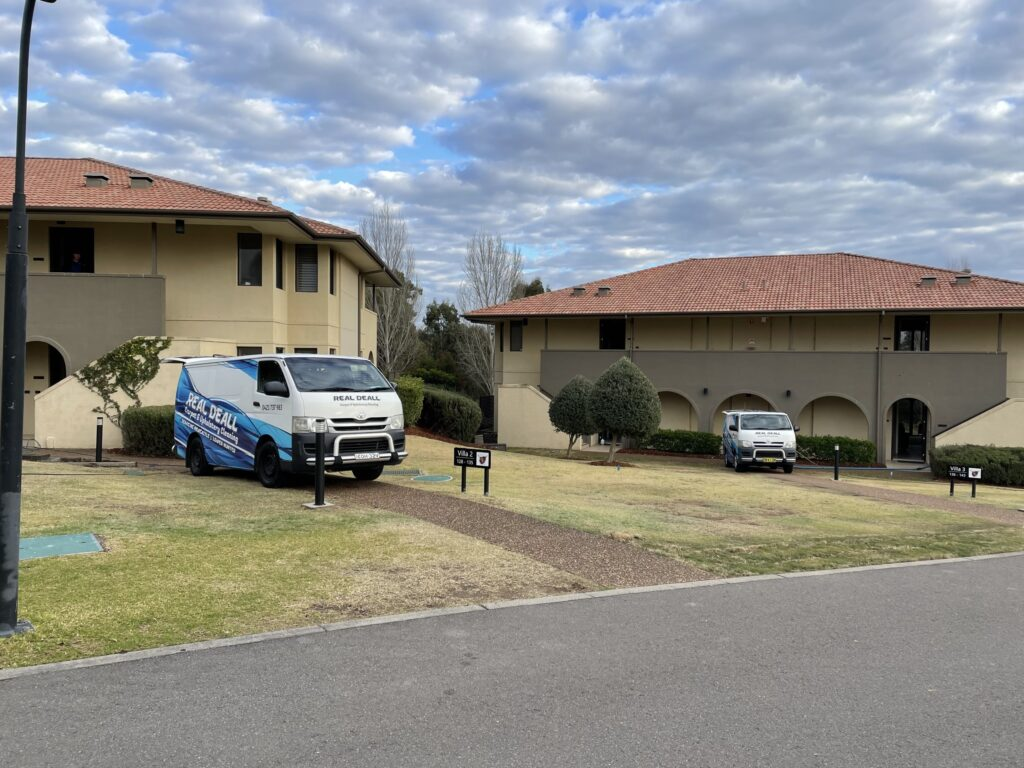Carpet Cleaning and Pest Control Singleton »