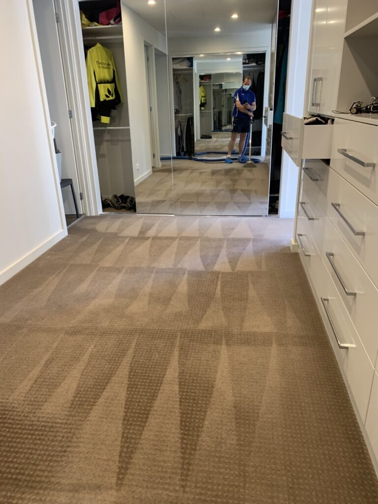Carpet and Rug Cleaning »